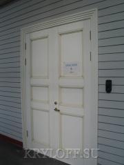 Дверь из дерева 03